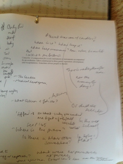 Amy Annotated first draft (2)