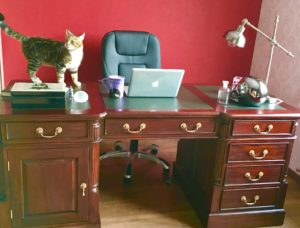 desk-and-my-special-editor-teddy