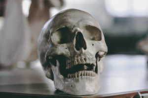 Free Course Great For Crime Writers Forensic Archaeology And Anthropology
